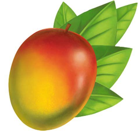Essay on favourite fruit mangos